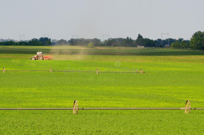 Trator que trabalha no campo agrícola fotografia de stock