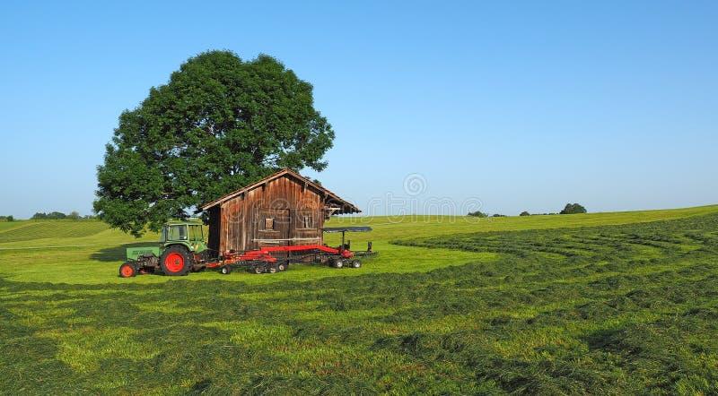 Trator velho de Fendt com o tedder giratório arrastado Faça feno pronto para ser colhido Armazenamento de madeira no campo para f imagem de stock