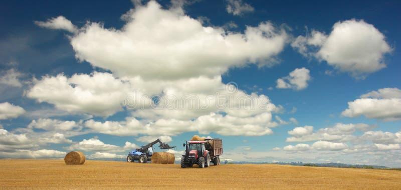 Tratores na colheita e na paisagem bonita imagens de stock