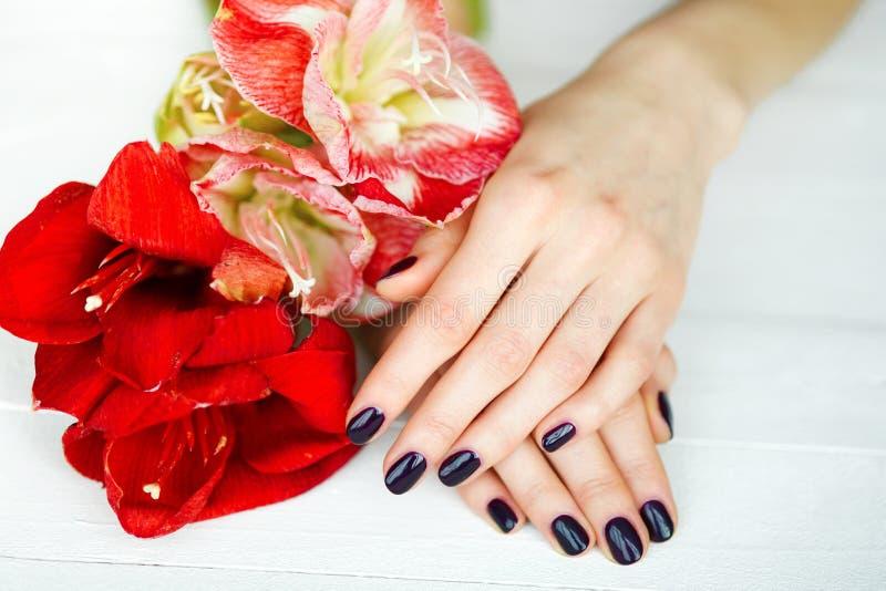 Trattamento della stazione termale per le mani della donna con i fiori rossi fotografia stock libera da diritti