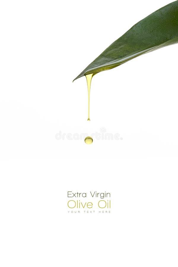 Trattamento di bellezza Sgocciolatura dell'olio d'oliva da una foglia verde fresca fotografie stock libere da diritti