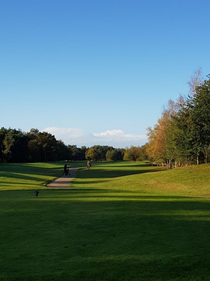 Tratti navigabili e verdi del campo da golf di golf fotografia stock libera da diritti