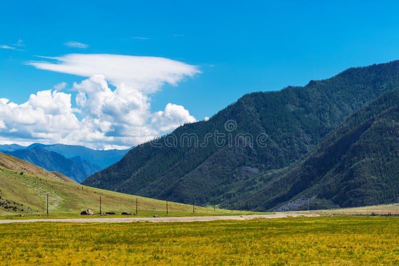 Tratto di Chui circondato dalle montagne Gorny Altai, Russia fotografia stock