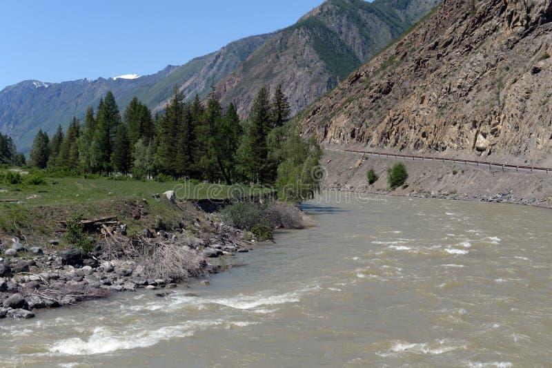 Tratto lungo il fiume, Repubblica di Altai, Siberia, Russia di Chui immagine stock