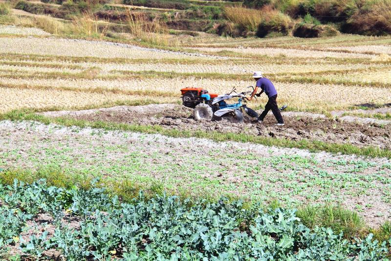Trattore della macchina di agricoltura di uso dell'agricoltore mini che prepara terra fotografie stock