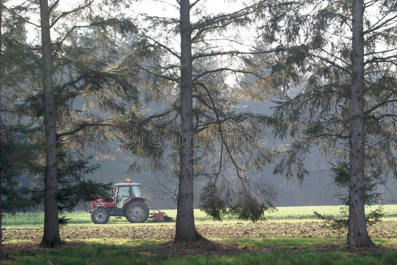 Trattore fra gli alberi immagine stock libera da diritti