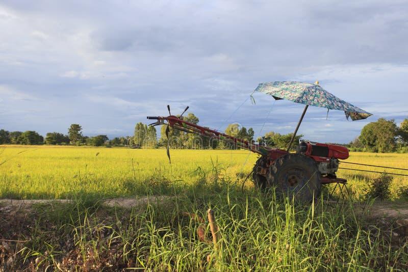 Trattore rosso vicino al giacimento del riso fotografia stock libera da diritti