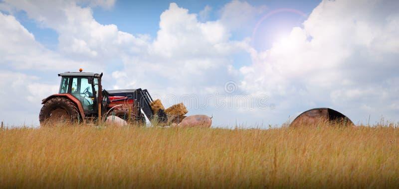 Trattore sul paesaggio dell'azienda agricola fotografia stock