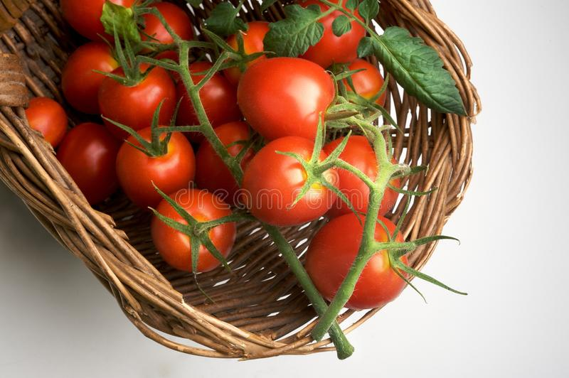 Traube der Tomate lizenzfreies stockbild