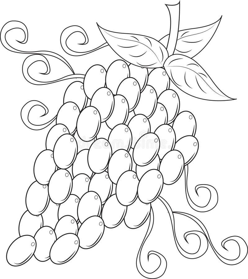 Trauben stock abbildung