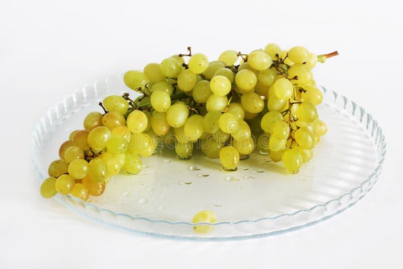 Trauben auf einem weißen Hintergrund Früchte lizenzfreie stockfotografie