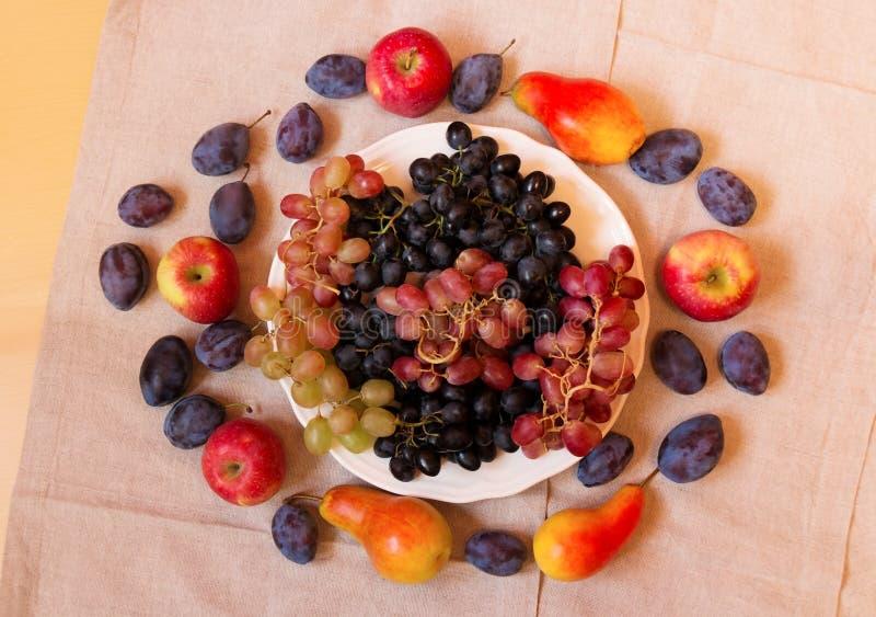 Trauben, Pflaumen, Äpfel und Birnen stockfotografie