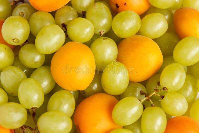 Trauben und Aprikosen Hintergrund S lizenzfreie stockfotografie