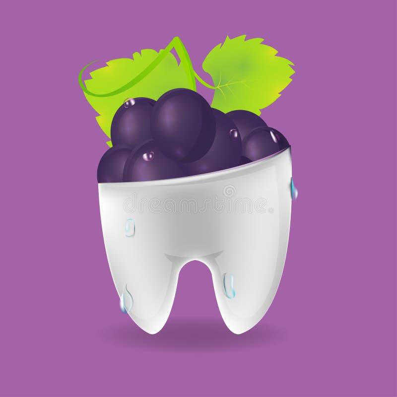 Trauben-Zahn-gemischter zahnmedizinischer Symbol-Vektor lizenzfreie abbildung