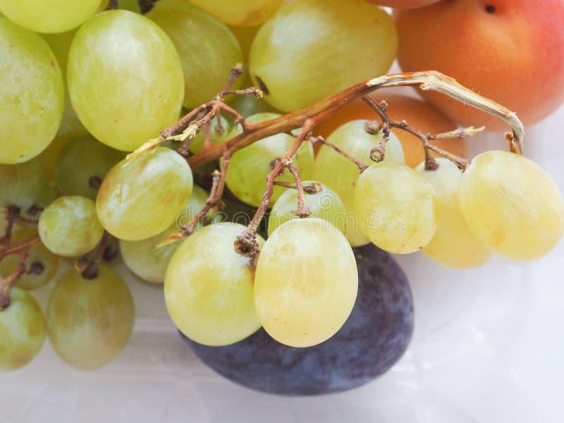 Traubenaprikose und Pflaumenfrucht lizenzfreie stockfotografie