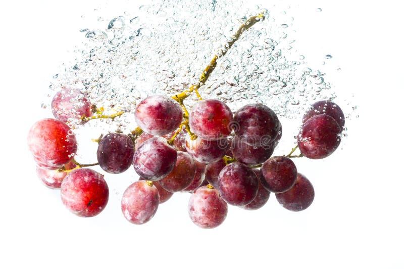 Traubenfrüchte fallen tief unter Wasser stockfotografie