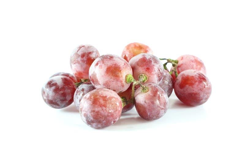 Traubenfrucht stockbilder