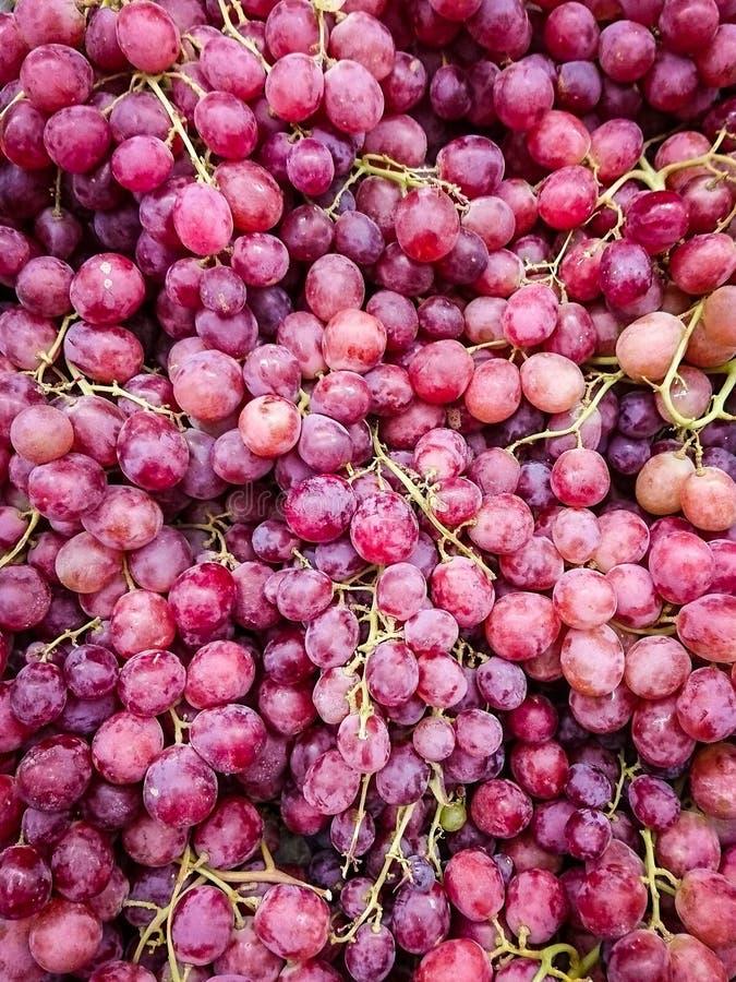 Traubenfrucht violett Mehrfach gesunde Lebensmittel natürliche Stillleben lizenzfreie stockfotografie