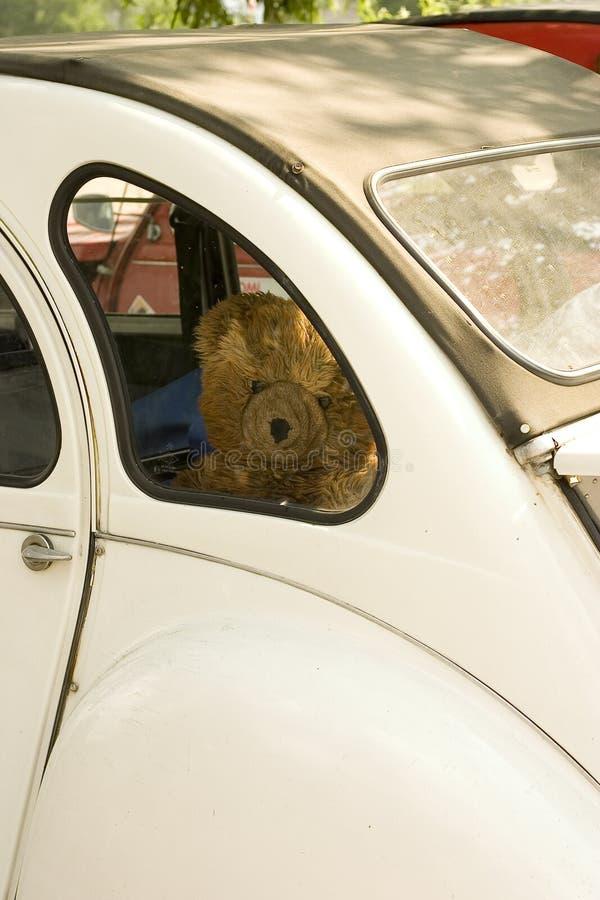 Traurig Teddybär-tragen Sie stockfotos