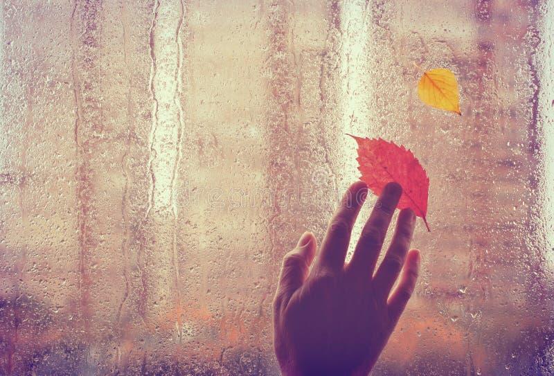 Trauriger Herbsthintergrund, erfahrener Arbeiter berührt nasses Fenster lizenzfreie stockfotografie