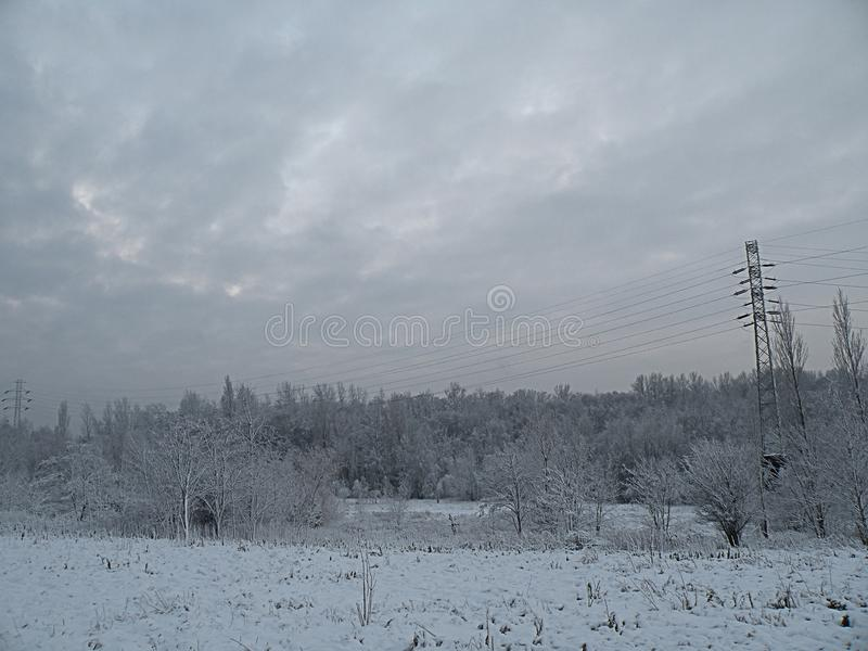 Trauriger Naturwinter-Panoramawald stockfoto