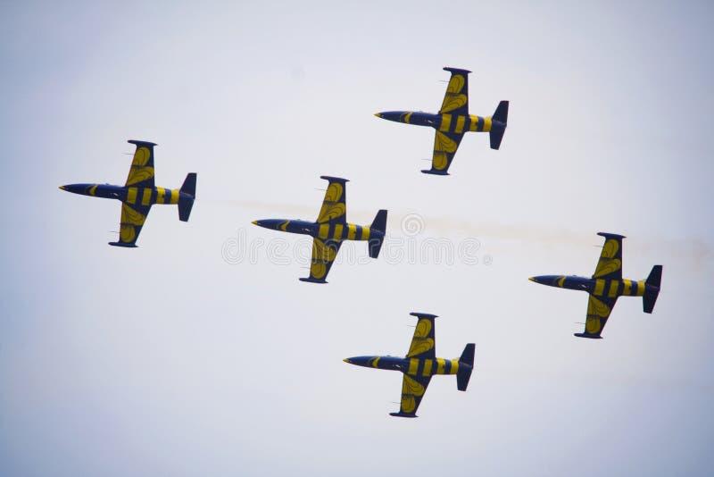 Travail d'équipe sur le ciel Abeilles baltiques dans l'action images stock