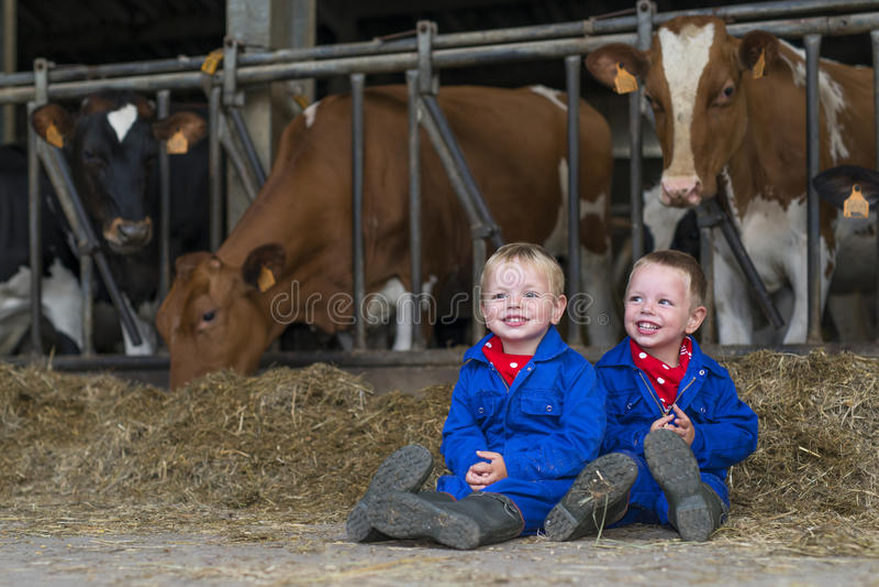Travail d'enfants à la ferme photographie stock