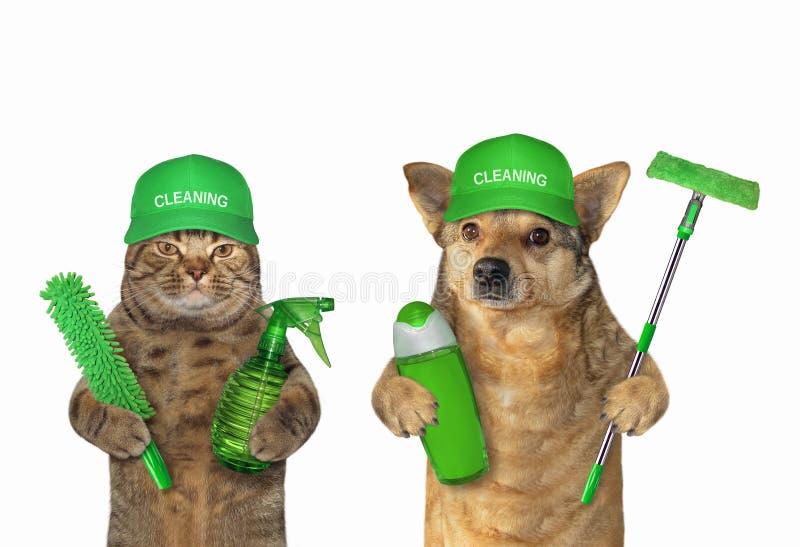 Travail de chien et de chat comme décapants photo stock