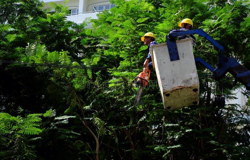 Travail vietnamien de travailleur sur l'ascenseur de boom pour couper la branche de l'arbre image stock
