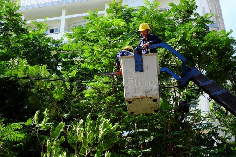 Travail vietnamien de travailleur sur l'ascenseur de boom pour couper la branche de l'arbre photos stock