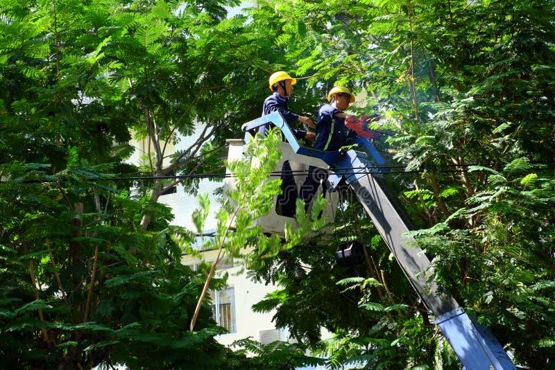 Travail vietnamien de travailleur sur l'ascenseur de boom pour couper la branche de l'arbre images libres de droits