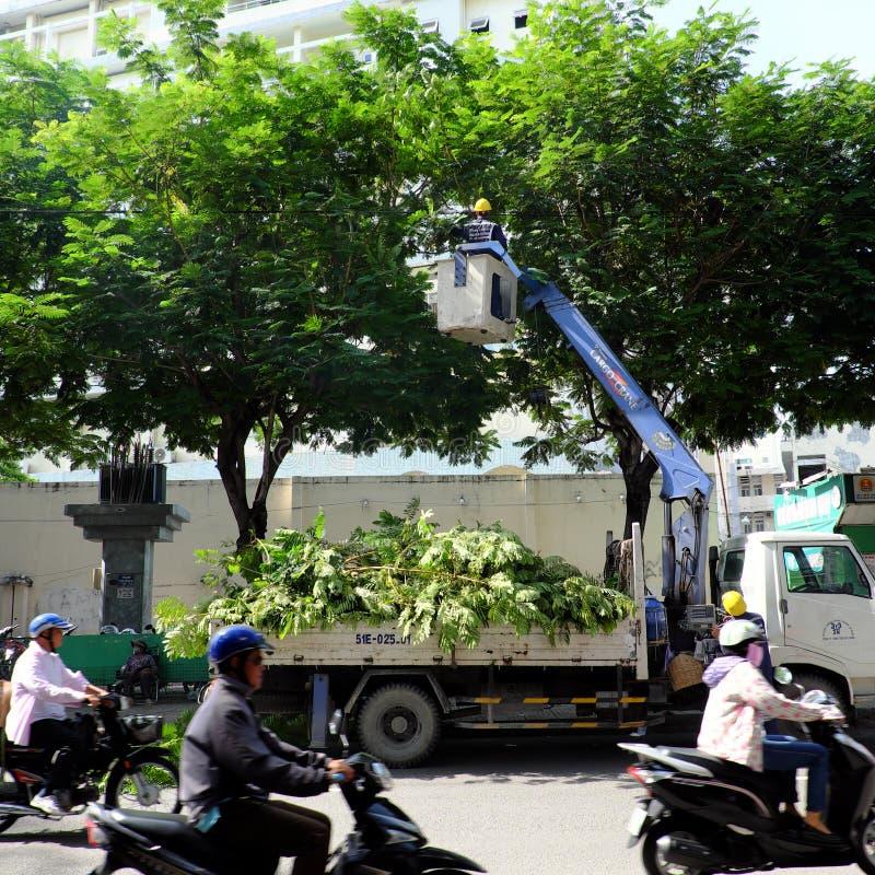 Travail vietnamien de travailleur sur l'ascenseur de boom pour couper la branche de l'arbre photographie stock
