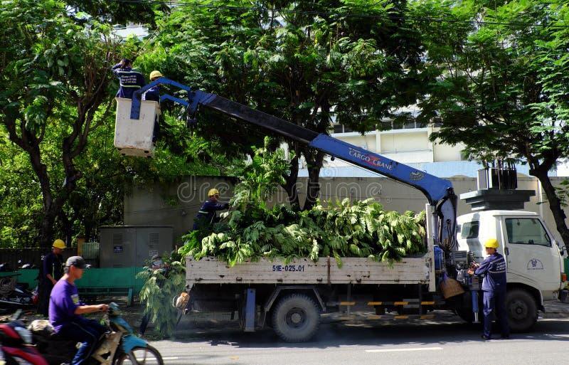 Travail vietnamien de travailleur sur l'ascenseur de boom pour couper la branche de l'arbre images stock