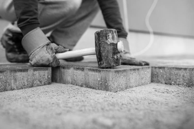 Travailleur étendant de nouvelles briques ou pierres de pavage les plaçant en position photos libres de droits