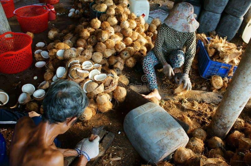 Travailleur asiatique, noix de coco, coprah, matériel, delta du Mékong photographie stock libre de droits