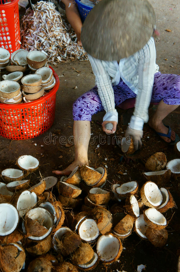 Travailleur asiatique, noix de coco, coprah, matériel, delta du Mékong photo stock