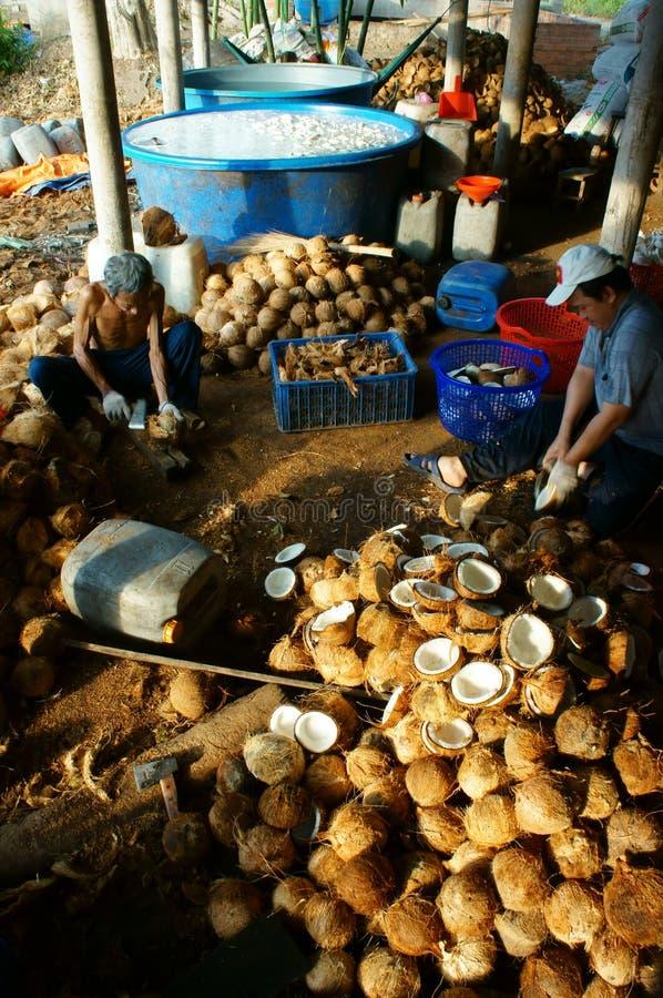 Travailleur asiatique, noix de coco, coprah, matériel, delta du Mékong images stock