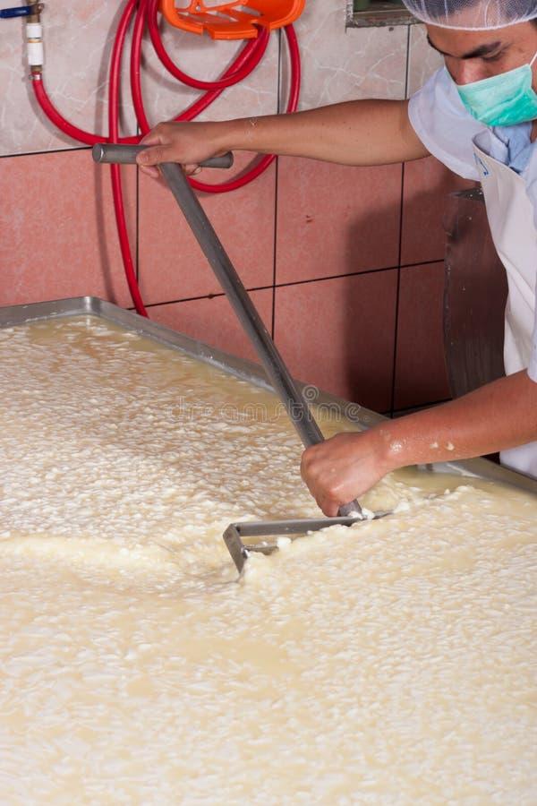 Travailleur de centrale de production de fromage photo stock