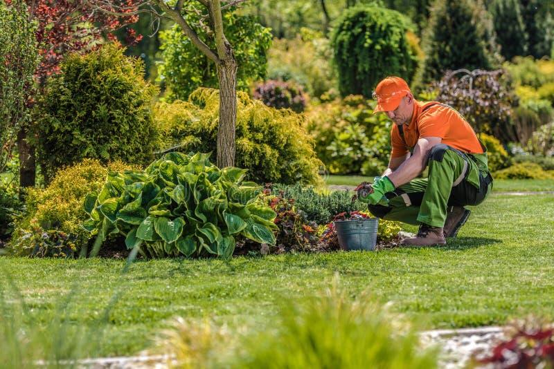 Travailleur professionnel de jardin image stock