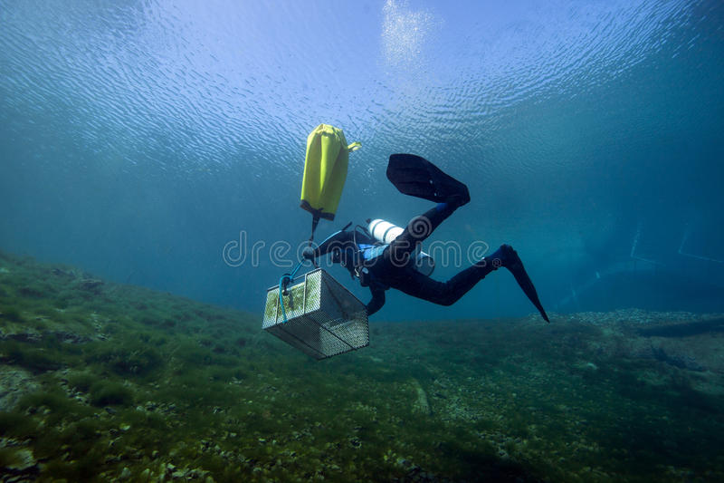 Travailleur sous-marin - ressorts de vortex image libre de droits