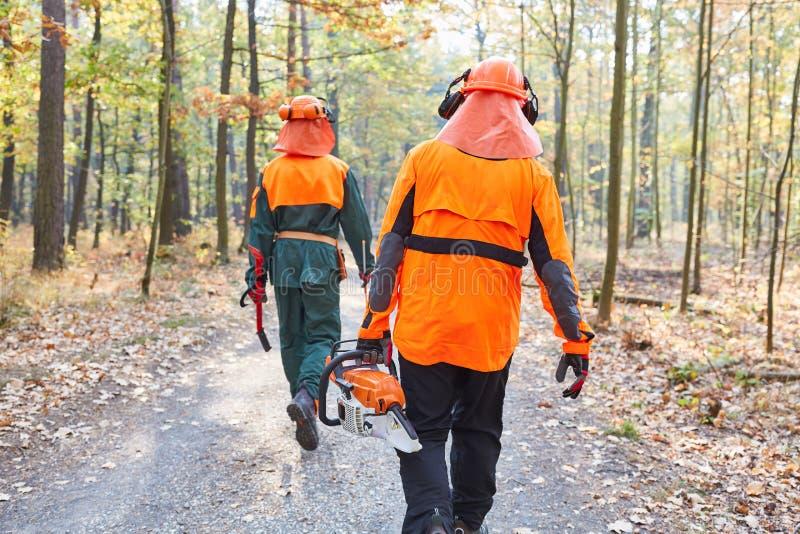 Travailleurs de forêt dans les vêtements de protection et avec la tronçonneuse photographie stock libre de droits