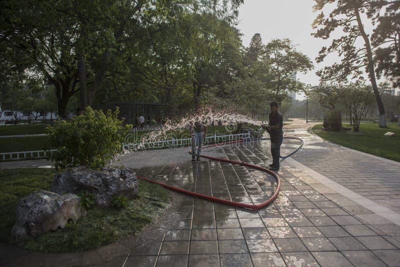 Travailleurs de jardin arrosant des fleurs en parc de lac Xuanwu photos stock