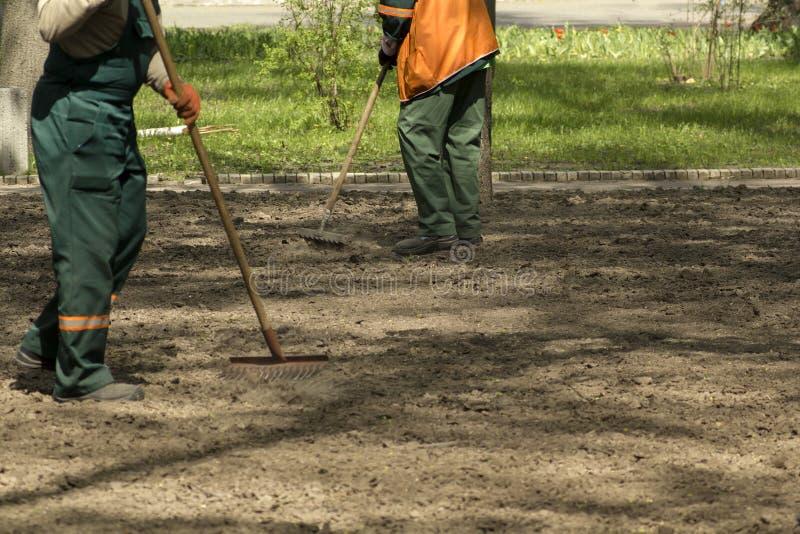 Travailleurs de jardinage de service préparant la terre en parc avec des outils de jardin Fond Defocused images stock