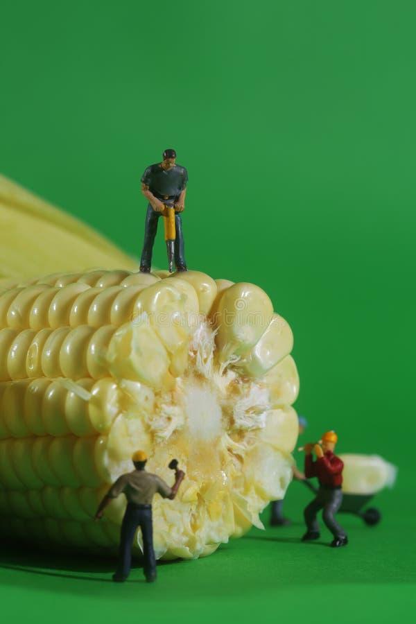 Travailleurs de la construction miniatures dans des images conceptuelles de nourriture avec C images libres de droits