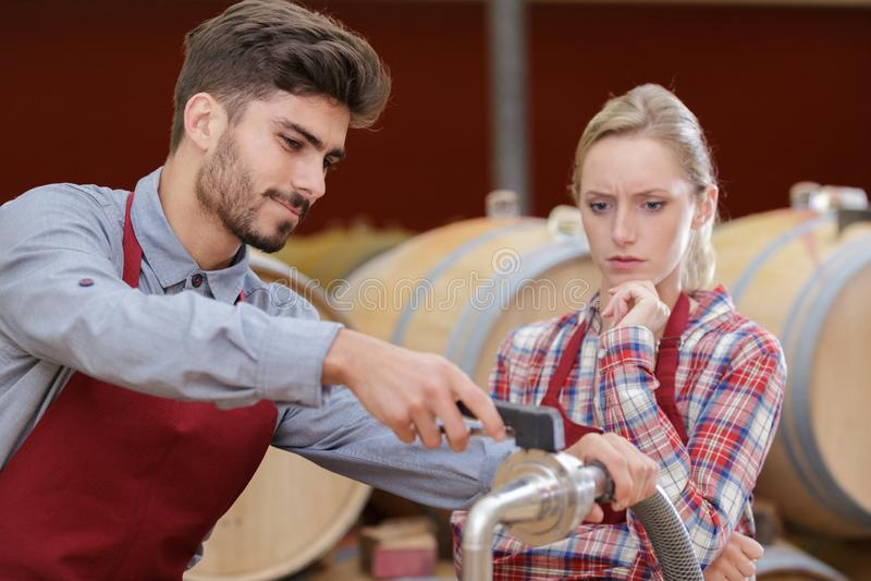 Travailleurs masculins et féminins dans la cave à vin photographie stock libre de droits