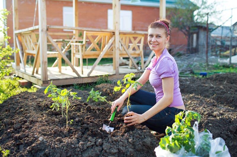 Travaux de jardin Jeune femme travaillant dans le jardin image stock