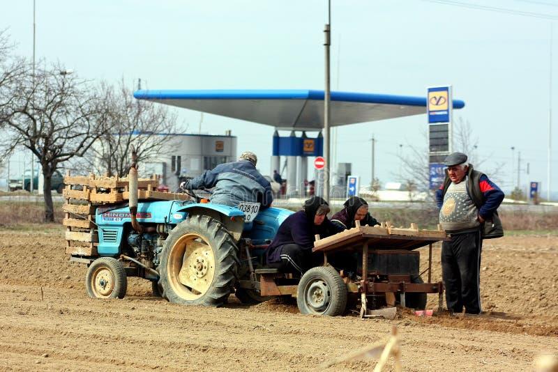 Travaux sur le terrain dans les zones rurales de la Transcarpathie dans le printemps image stock