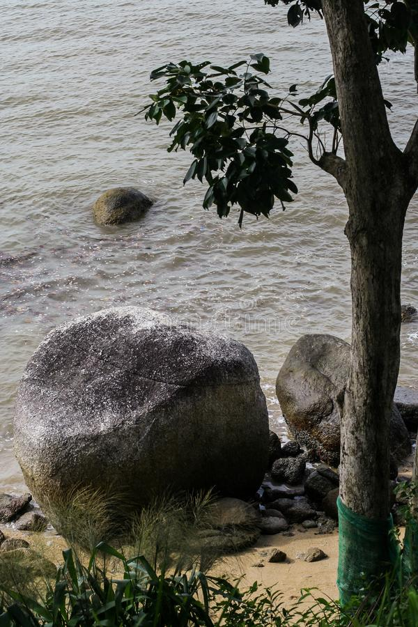 Travel around Asia. Seascape with palm trees and big stones on the beach of Phuket Island. stock images