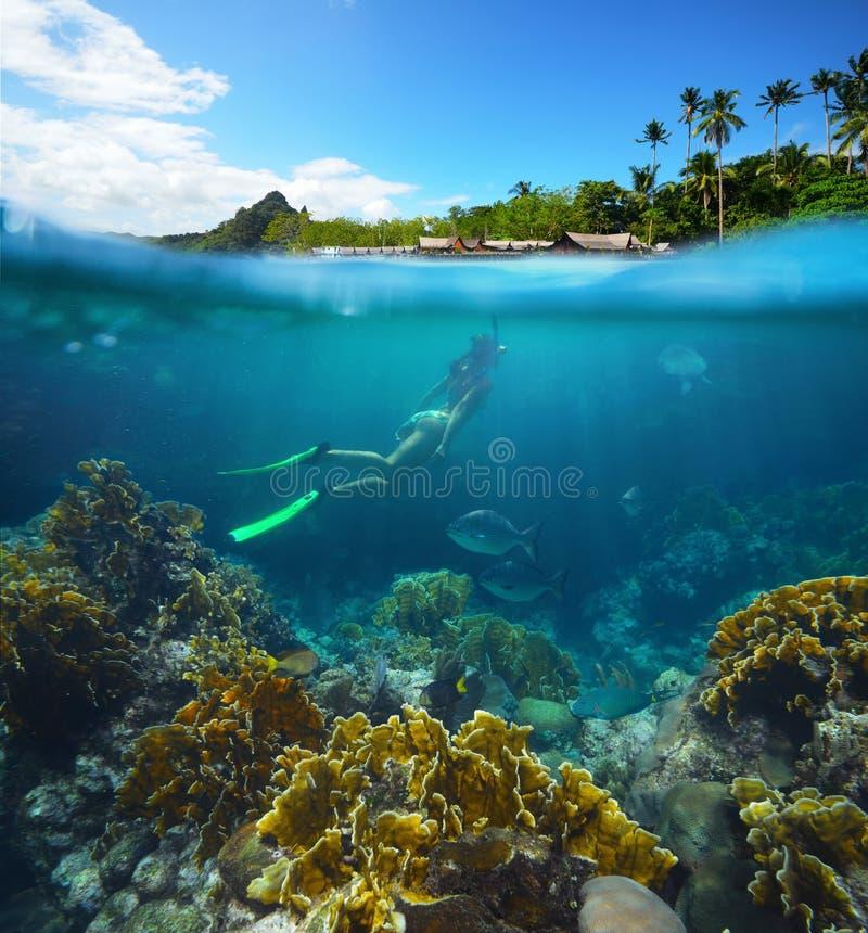Desert Island Beach: Tropical Island Beach With The Half Underwater View With
