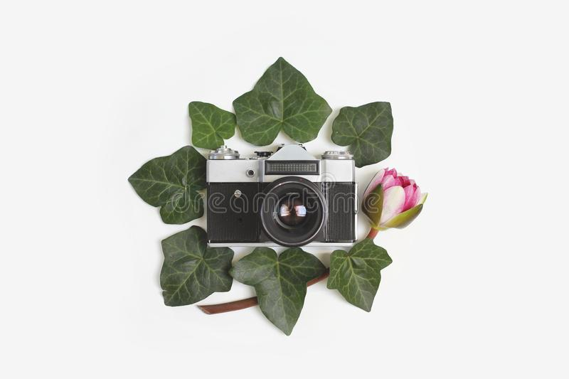 Travel concept - floral frame made of green ivy leaves, nymphaea waterlily purple flowers and vintage retro camera in the middle. On white background. Flat lay royalty free stock photo